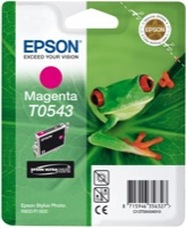 Epson T0543 magenta patron